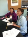 HL Biology Students work with Microscopes