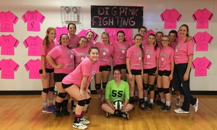 dig-pink-volleyball-1